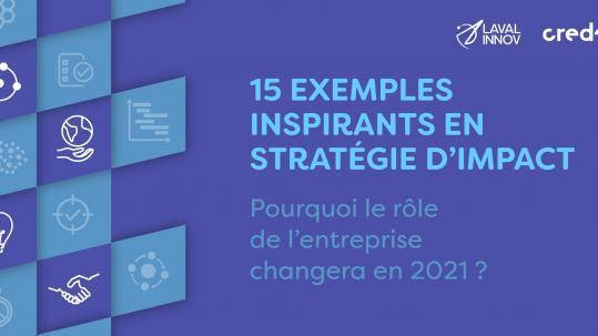 Webinaire: 15 exemples inspirants en stratégie d'impact